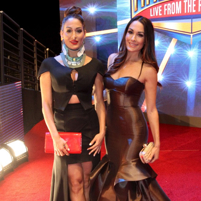 Nikki and Brie Bella - WWE Hall of Fame Ceromony 2016 in Dallas