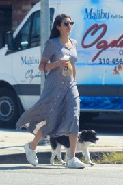 Nina Dobrev - Seen while takes her dog for a coffee run in Hollywood