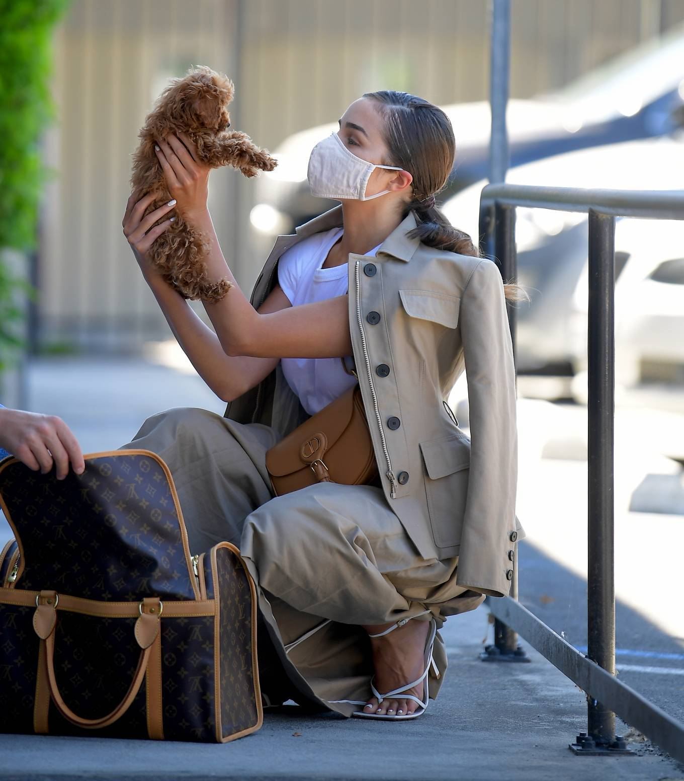 Olivia Culpo - Visits the Vet with her New Puppy Oliver Sprinkles in LA