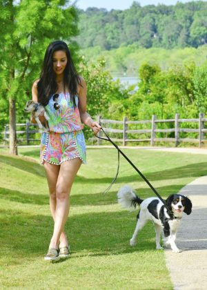 Wags West Dog Walking