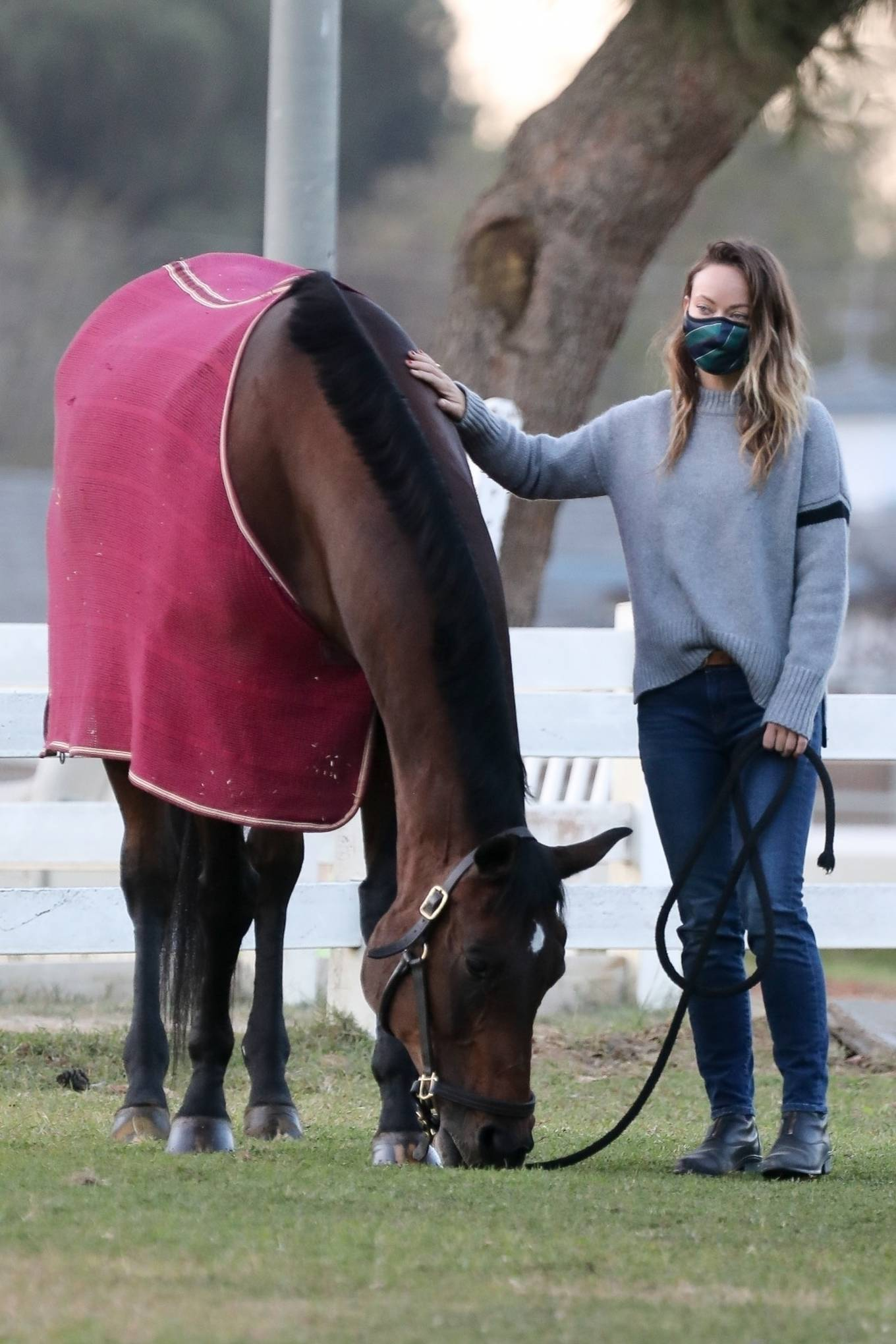Olivia Wilde - Visiting her horse in Los Angeles