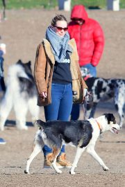 Olivia Wilde with her dog at local dog park in Brooklyn