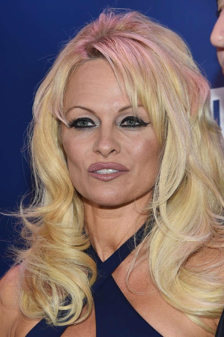 Pamela Anderson: 2015 ...