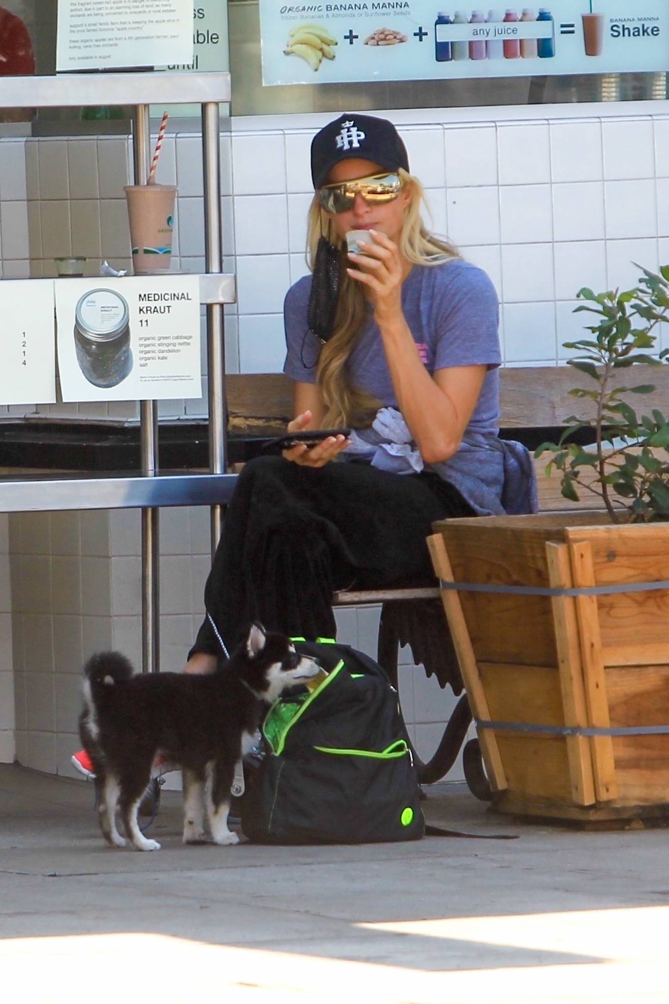 Paris Hilton - With her puppy out in Hollywood