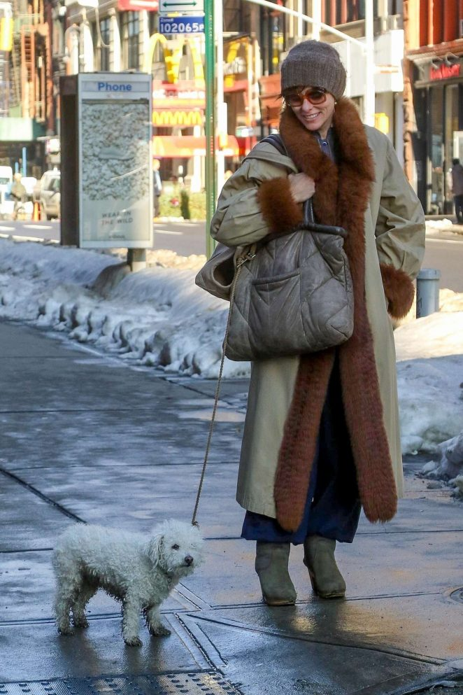 Parker Posey with her dog out in NYC
