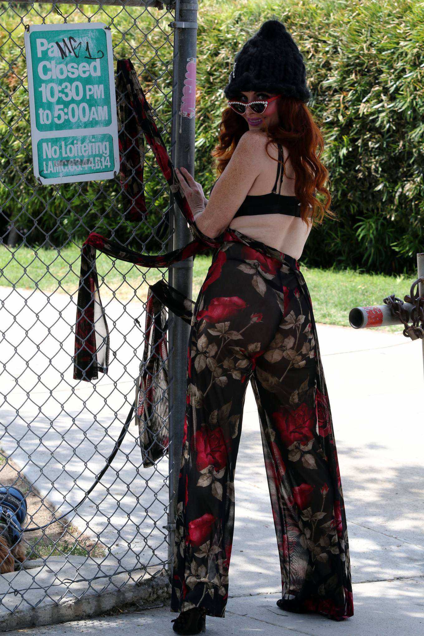 Phoebe Price 2020 : Phoebe Price – Out with her dog Henry in Los Angeles-02