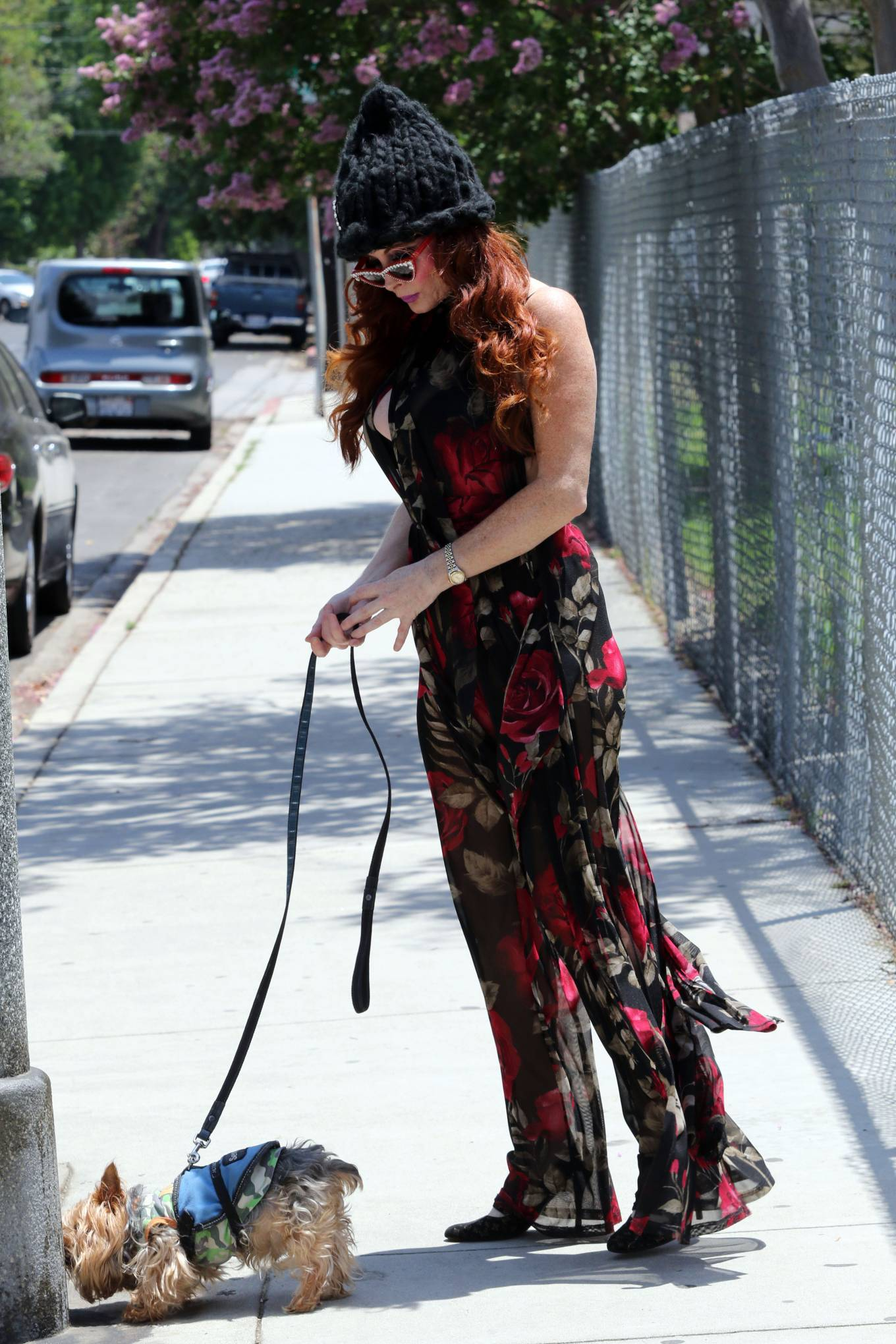 Phoebe Price 2020 : Phoebe Price – Out with her dog Henry in Los Angeles-05