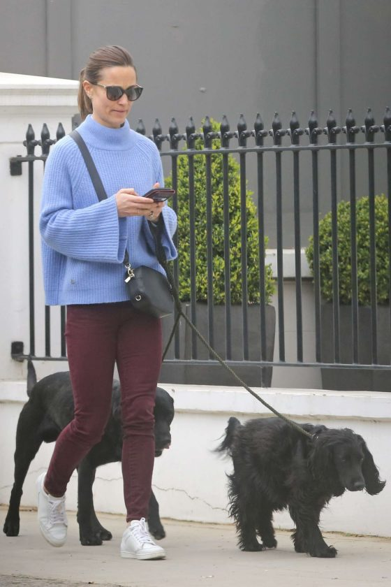 Pippa Middleton - Takes her dogs for a walk in London