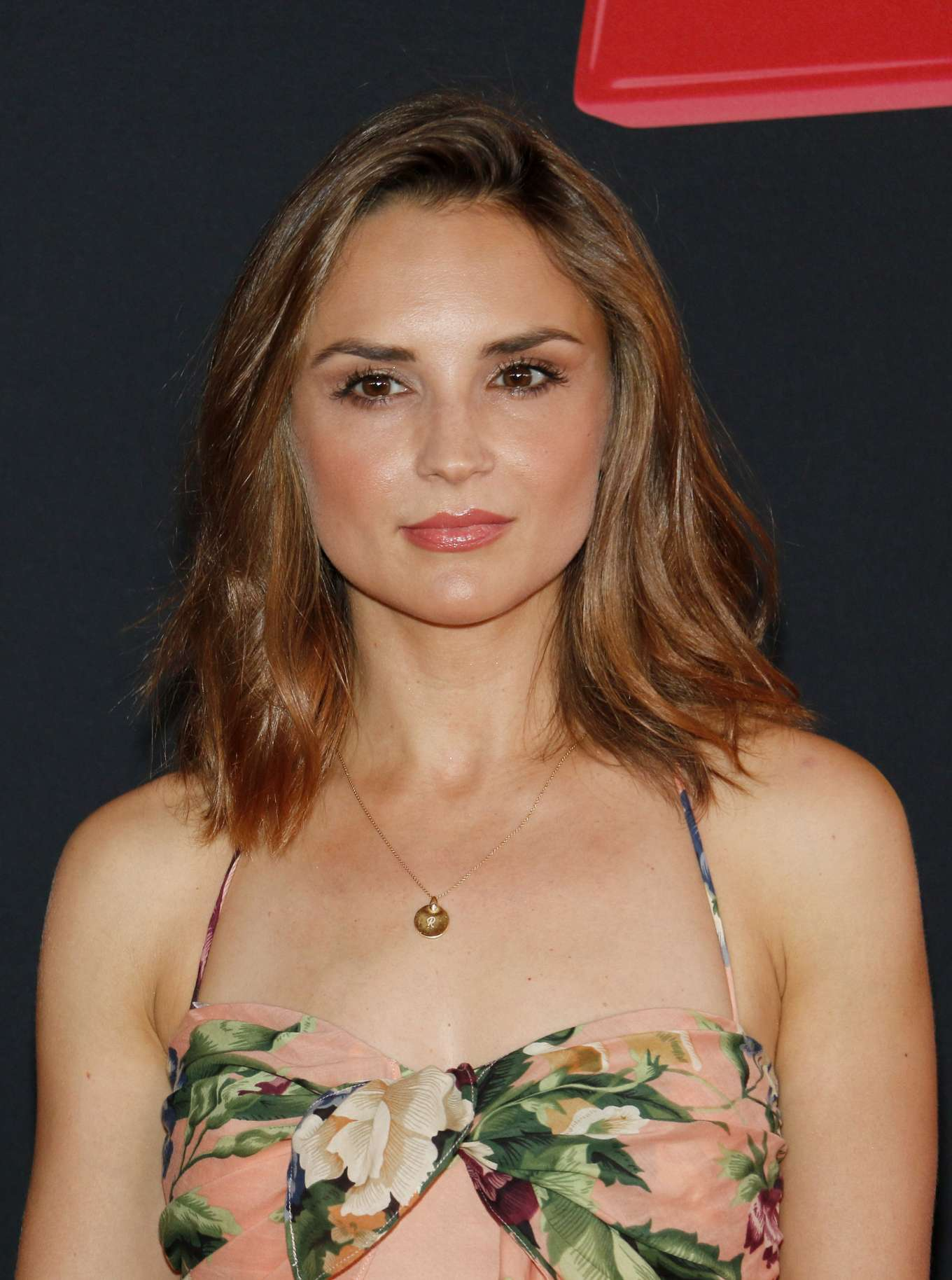 Rachael Leigh Cook 2019 : Rachael Leigh Cook: Toy Story 4 LA Premiere-02