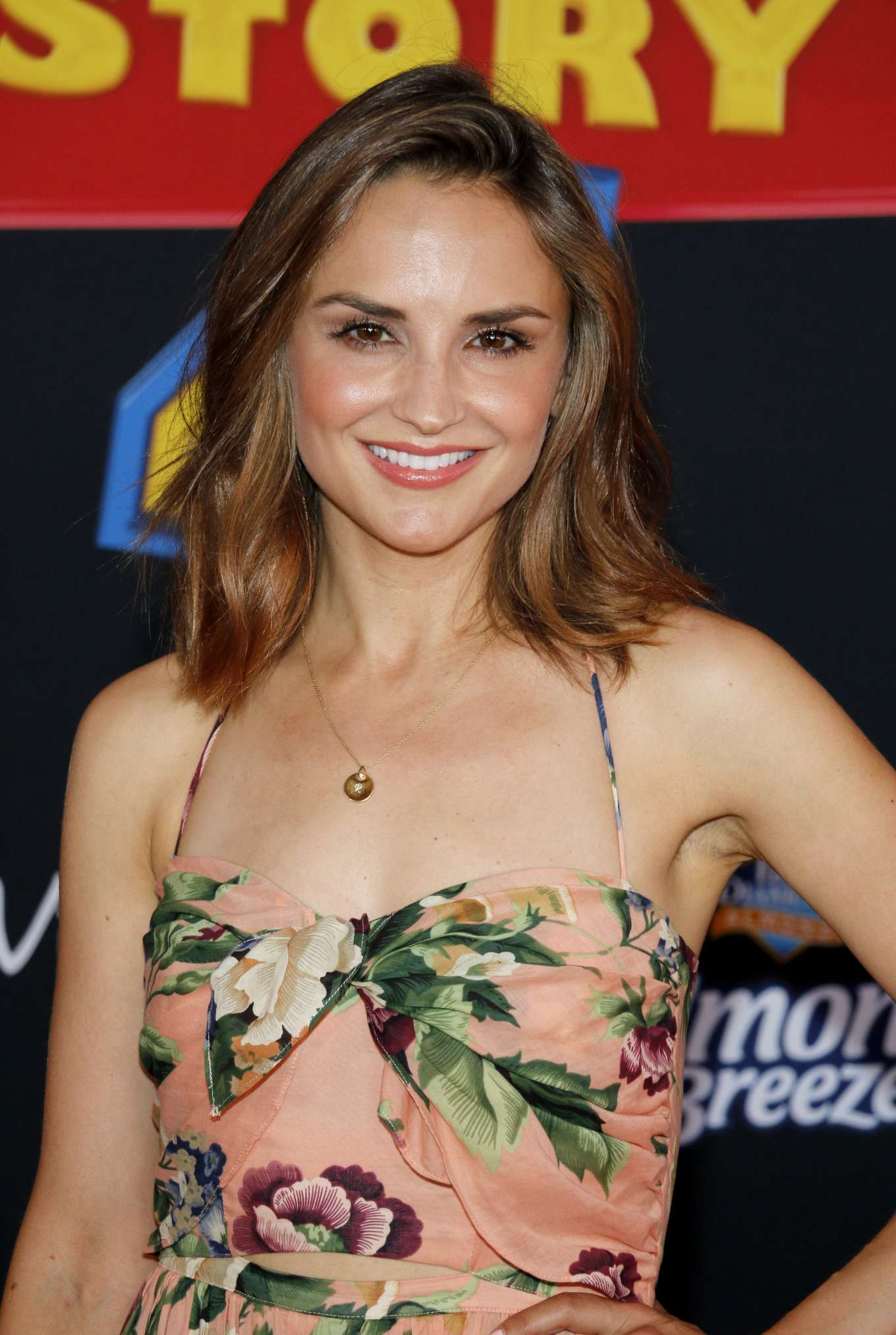 Rachael Leigh Cook 2019 : Rachael Leigh Cook: Toy Story 4 LA Premiere-04