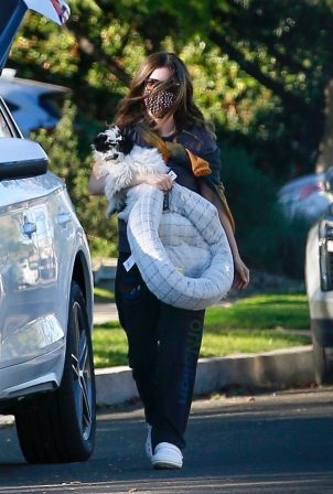Rachel Bilson - Out with her dog in Los Angeles