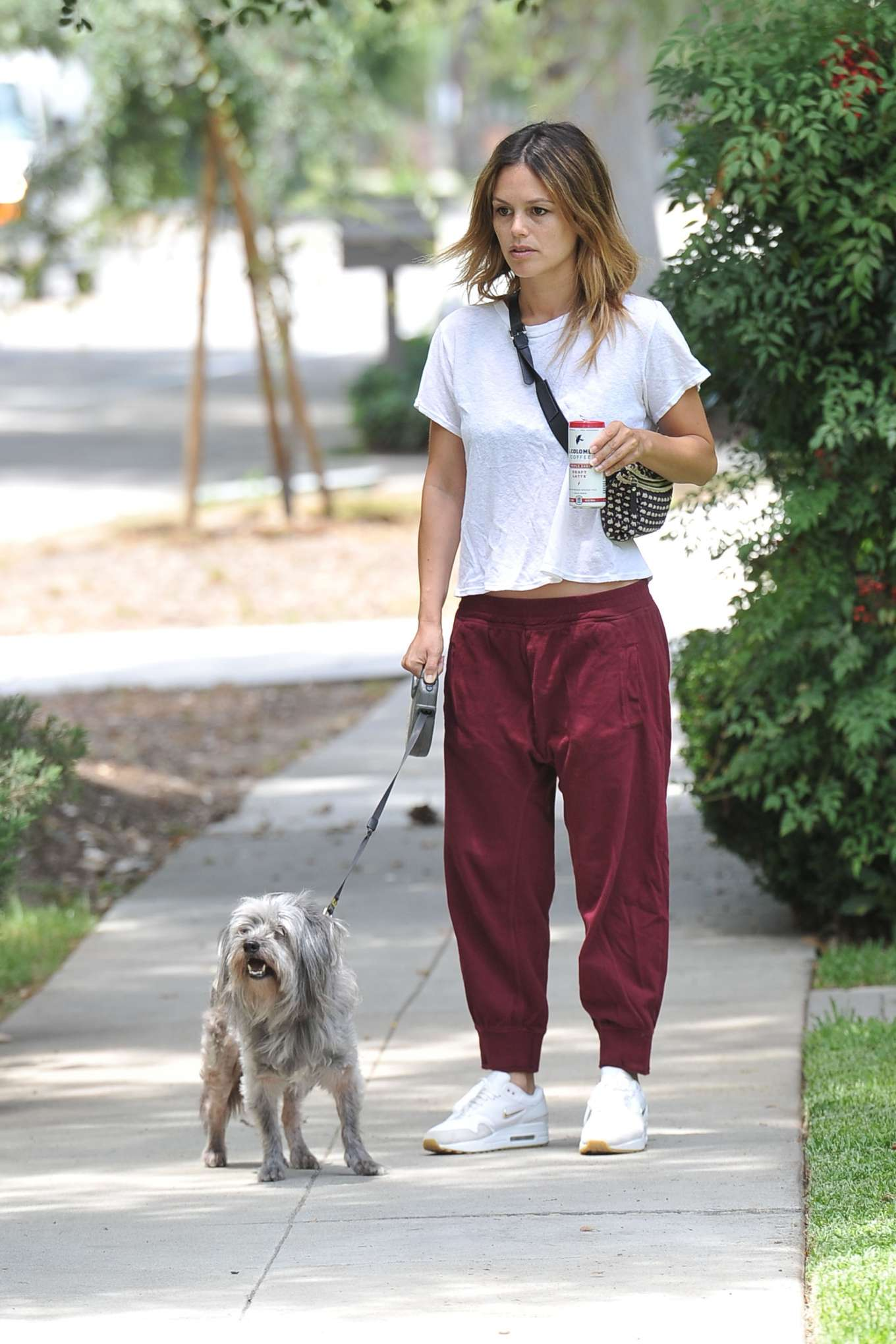 Rachel Bilson - Walking her dog in Los Angeles