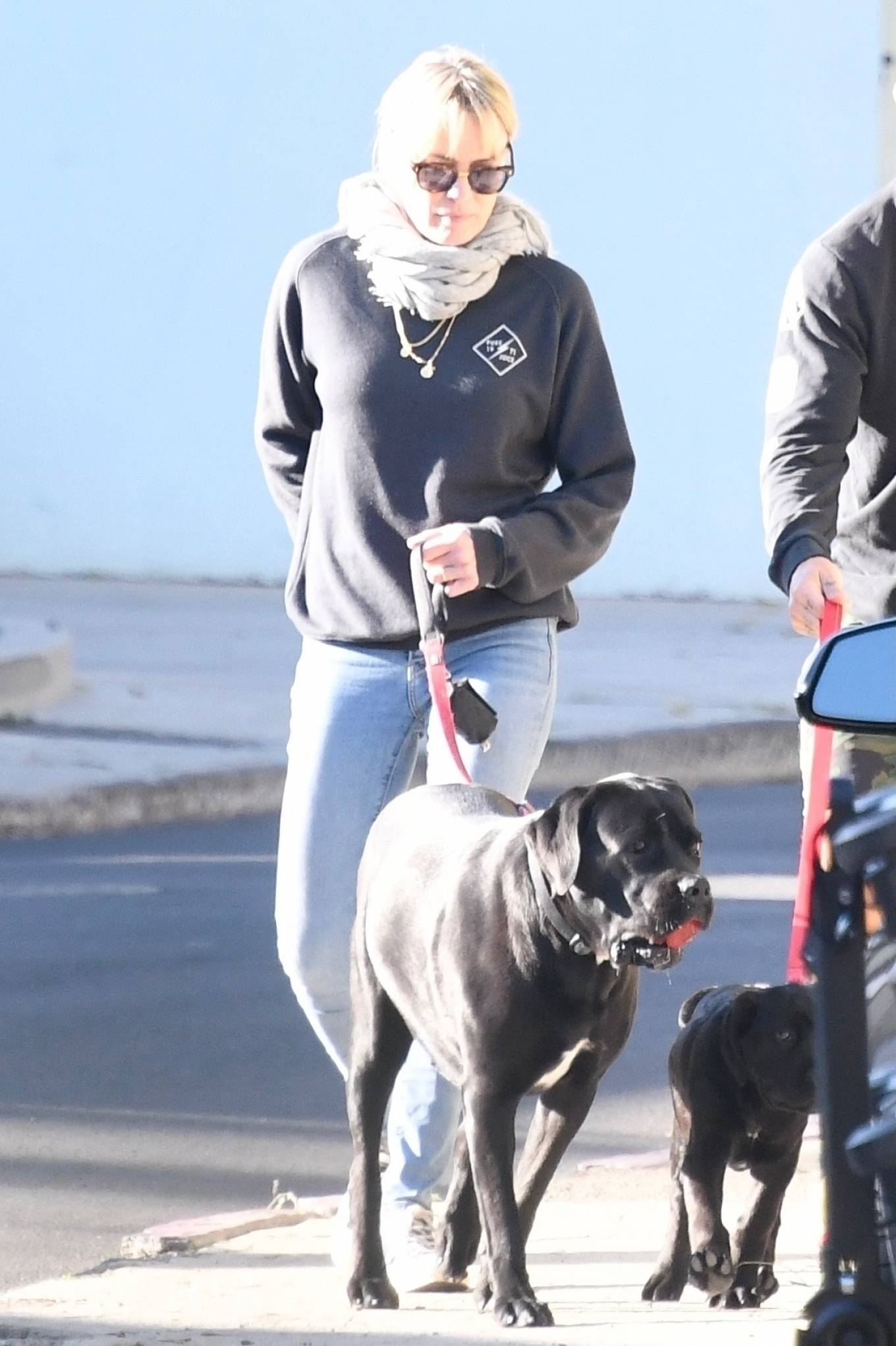 Robin Wright 2021 : Robin Wright – With her husband Clement Giraudet take their dogs out in Brentwood-09