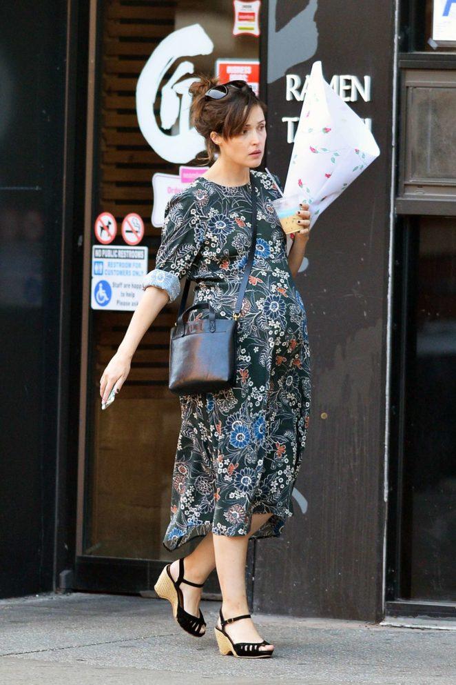 Rose Byrne in Long Dress -01