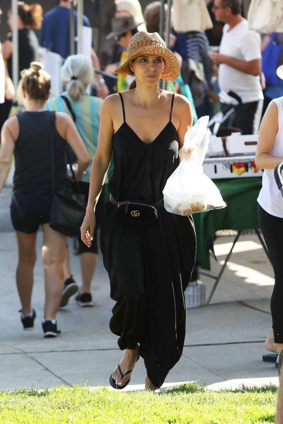 Roselyn Sanchez - Shopping at the Farmers Market in Los Angeles