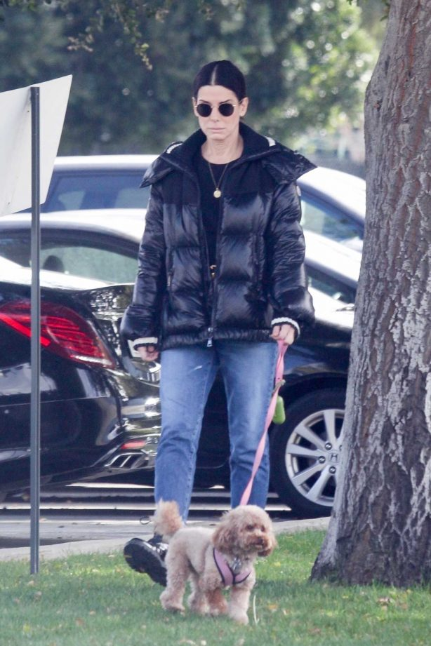 Sandra Bullock - Takes her dog out for an afternoon walk in Van Nuys