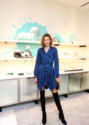 Sanne Vloet - Tiffany and Co. Collection Launch Event in New York