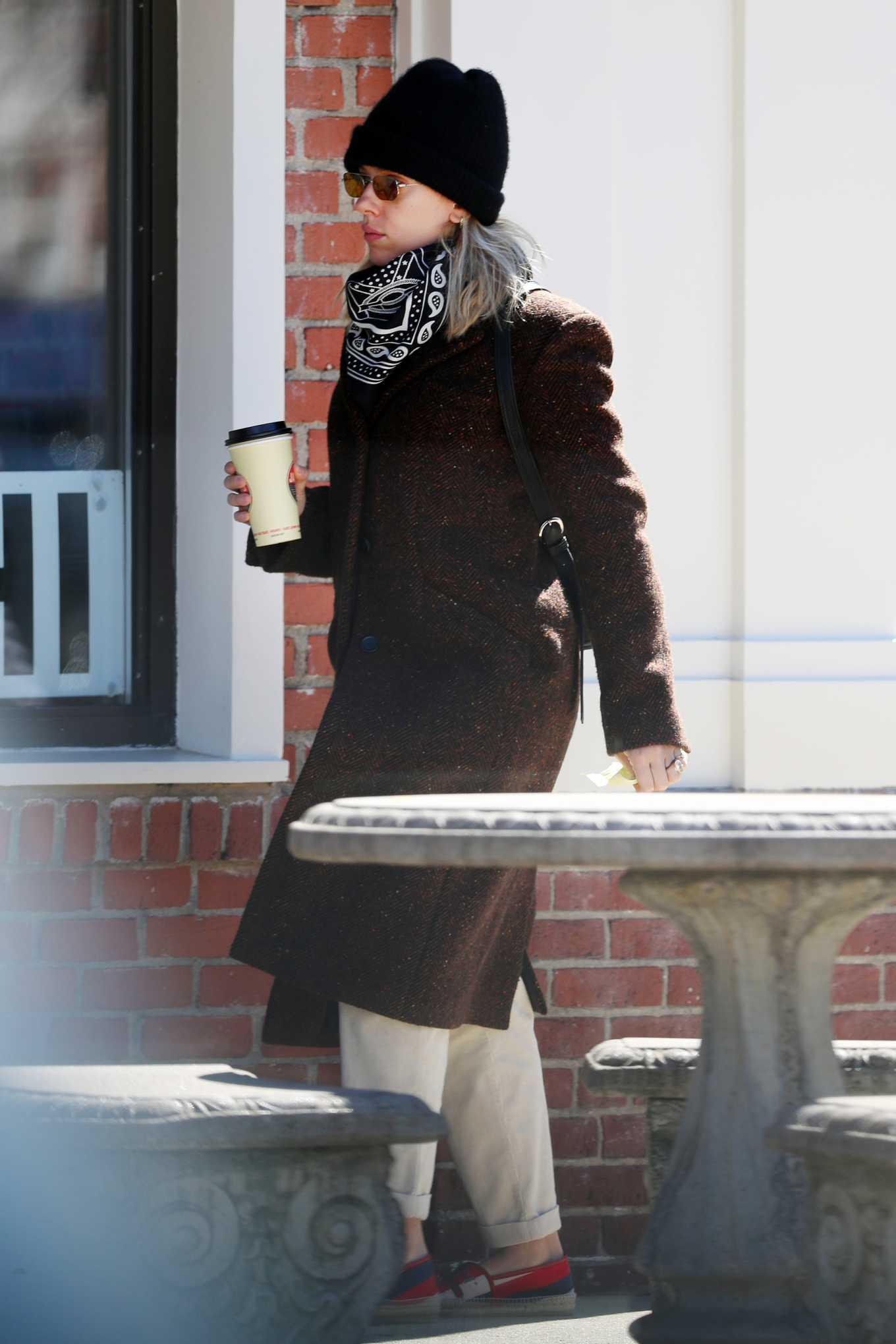 Scarlett Johansson 2020 : Scarlett Johansson – Grocery shopping in the Hamptons-18