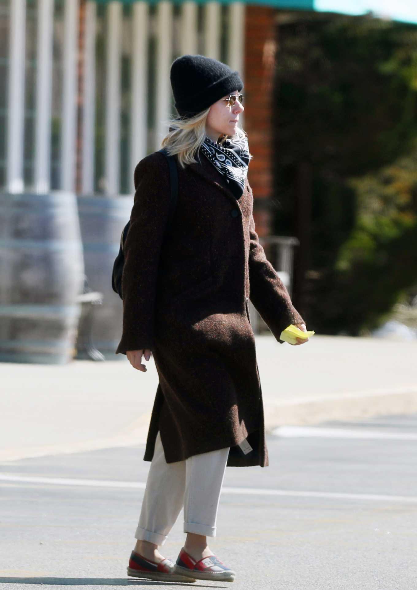 Scarlett Johansson 2020 : Scarlett Johansson – Grocery shopping in the Hamptons-30
