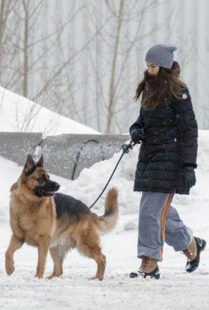 Shailene Woodley - Seen walking her dog in Montreal