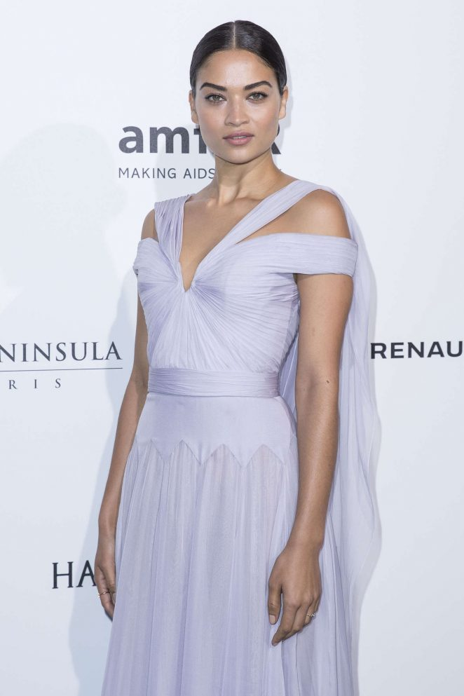 Shanina Shaik - Amfar Paris Dinner 2016 in Paris