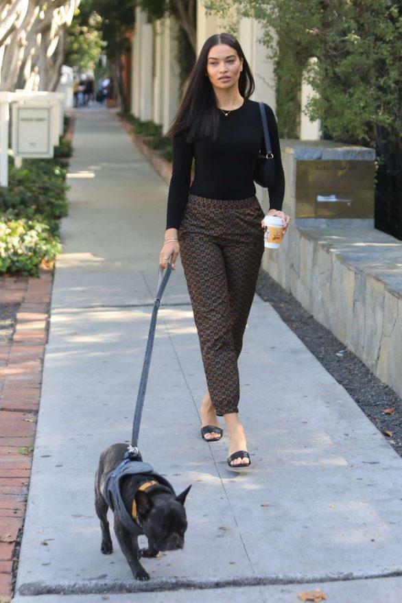 Shanina Shaik - Walking her dog in West Hollywood