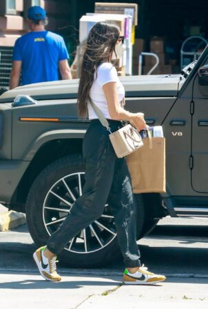 Shay Mitchell - grocery run in Los Feliz