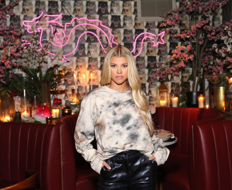 Sofia Richie 2019 : Sofia Richie – New Personal pics-01
