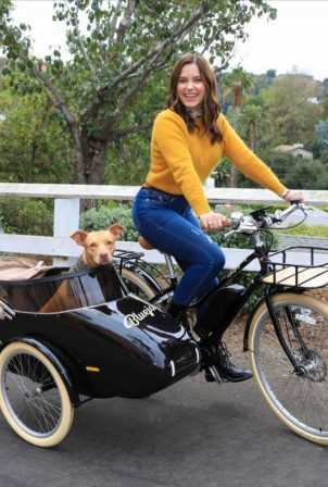 Sophia Bush - Spotted while driving her Dog with a Bike in Los Angeles