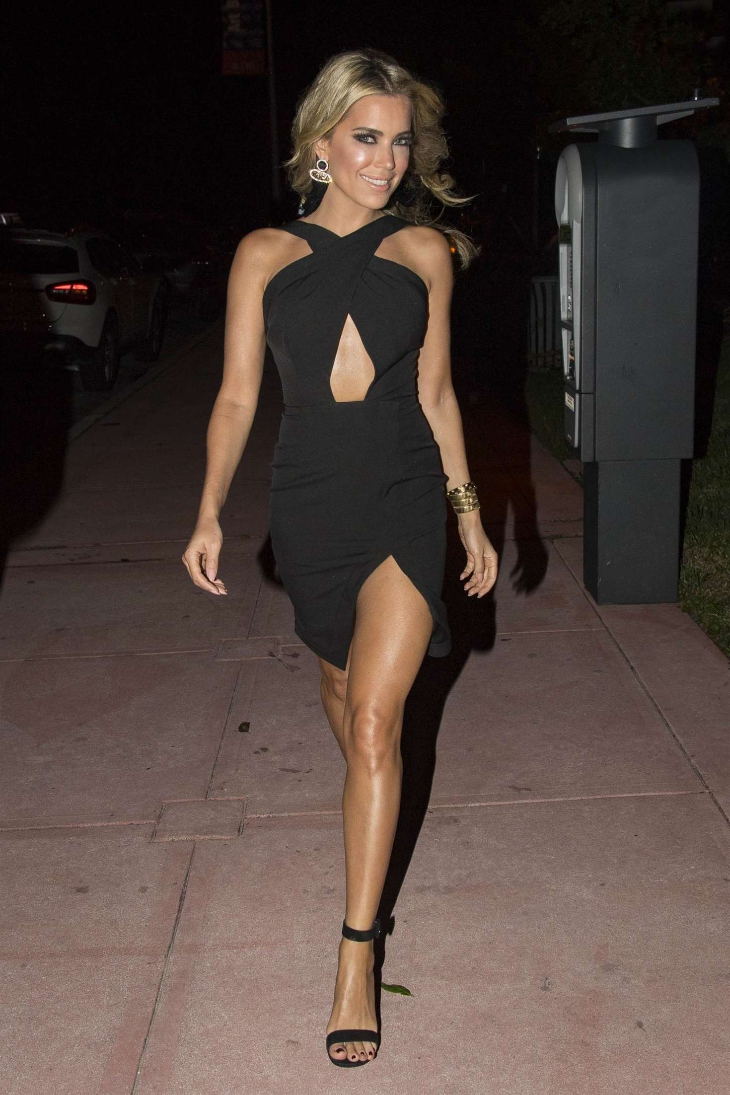 Sylvie Meis in a little black dress out in Miami