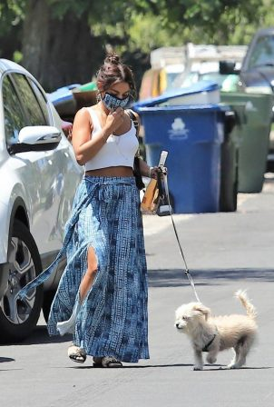 Vanessa Hudgens - Out for a dog walk in Los Angeles