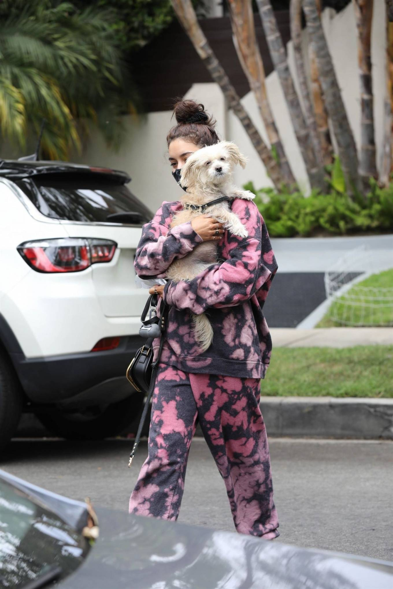 Vanessa Hudgens 2020 : Vanessa Hudgens – Out with her Dog in Beverly Hills -10