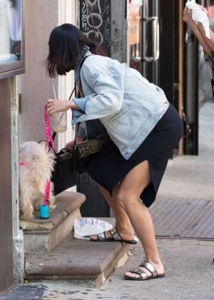 Vanessa Hudgens - Walking her dog in NYC