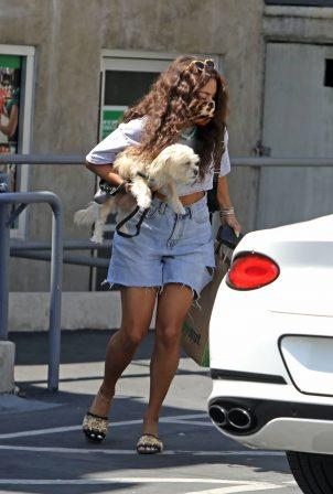 Vanessa Hudgens - With her dog in Los Feliz