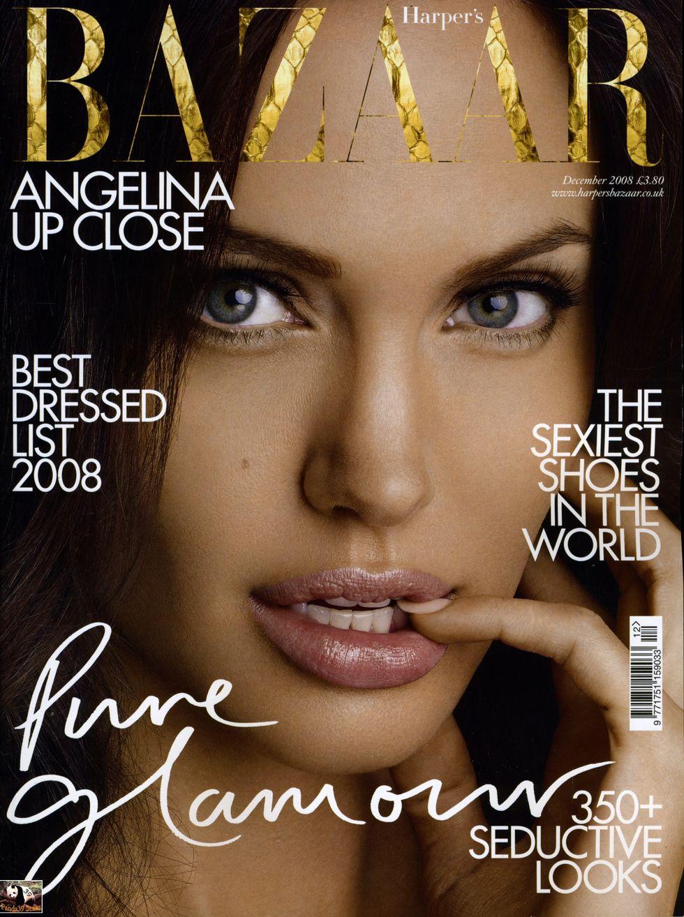 angelina-jolie-harpers-bazaar-magazine-december-2008-01