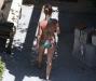 britney-spears-bikini-candids-in-hollywood-09