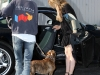 lindsay-lohan-leggy-candids-in-hollywood-2-04