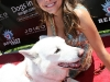 maria-menounos-at-dogs-in-danger-celebrity-benefit-10