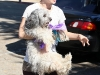 rachel-bilson-candids-at-griffith-park-in-hollywood-05